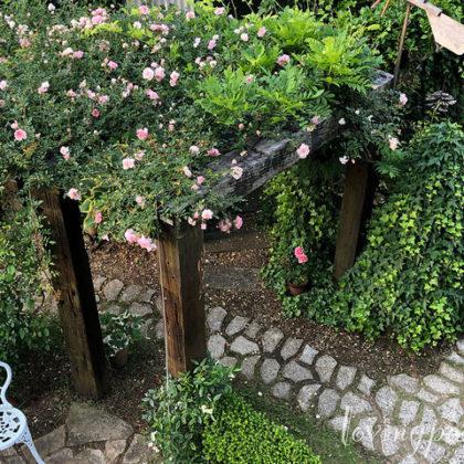 月乃ガーデンへようこそ